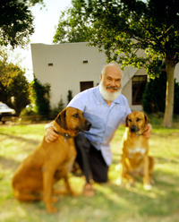 andrew weil gay