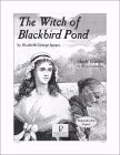 The Witch Of Blackbird Pond Study Guide