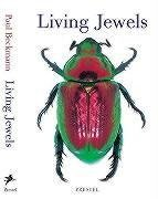 Living Jewels: The Natural Design of Beetles