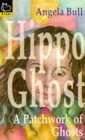 A Patchwork of Ghosts (Hippo Ghost)