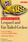 Leopard and Fat-Tailed Geckos Leopard and Fat-Tailed Geckos