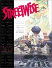 Streetwise: Autobiographical Stories by Comic Book Professionals