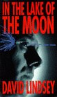 In the Lake of the Moon (Stuart Haydon, #4)