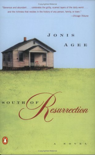 South of Resurrection by Jonis Agee