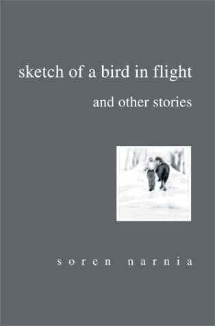 Sketch of a Bird in Flight and Other Stories