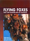 Flying Foxes: Fruit And Blossom Bats Of Australia