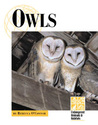 Endangered Animals and Habitats - Owls (Endangered Animals and Habitats)