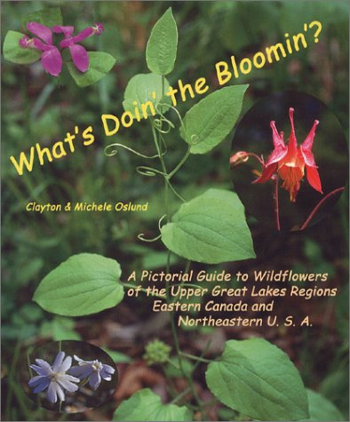 What's Doin' the Bloomin'?: A Pictorial Field Guide to Wildflowers, by Season, of the Upper Great Lakes Regions, Eastern Canada and Northeastern U