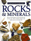 Rocks & Minerals (Eyewitness Books)