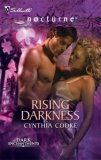 Rising Darkness (Dark Enchantments #2)