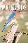 Bluebirds (Camp & Cottage Collection, 2. Wildlife)