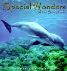 Special Wonders of the Sea World