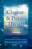 Cleanse And Purify Thyself, Book Two by Judith Mathieu