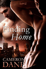 Finding Home (Quinn Security #1)