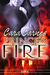 Prince's Fire (Warrior's Paradise #2)