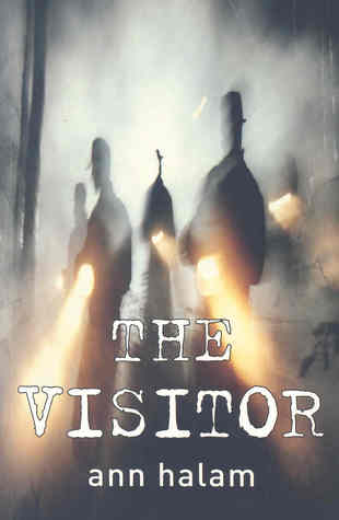 The Visitor by Ann Halam