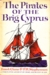 The Pirates of the Brig Cyprus