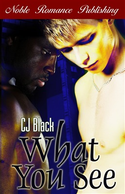 What You See by C.J.  Black