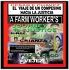 Cesar Chavez  A  Farmworker's Journey to Justice