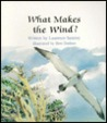 What Makes the Wind?