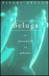 Beluga: A Farewell to Whales