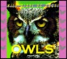 Wild Birds of Prey - Owls (Wild Birds of Prey)