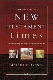 New Testament Times: Understanding the World of the First Century