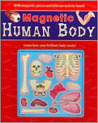 Magnetic Human Body