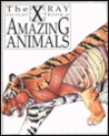 The X-Ray Picture Book of Amazing Animals