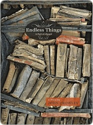 Endless Things (The Aegypt Cycle, #4)