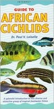 Guide to African Cichlids