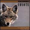 The World of the Coyote