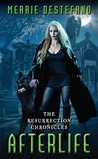 Afterlife (The Resurrection Chronicles, #1)