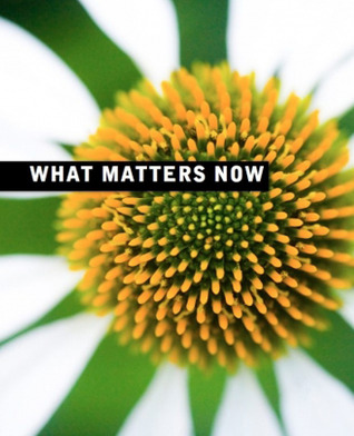 What Matters Now by Seth Godin
