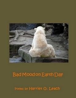 Bad Mood on Earth Day by Harriet Leach