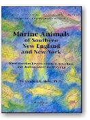 Marine Animals of Southern New England and New York by Howard M. Weiss