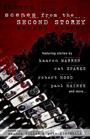 Scenes from the Second Storey by Amanda Pillar