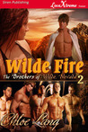 Wilde Fire (The Brothers of Wilde, Nevada #2)
