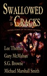 Swallowed by the Cracks: Sixteen Stories of the Spaces Between