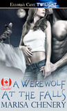 A Werewolf at the Falls (Big City Pack Series - Oh, Canada!, #2)