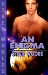 An Enigma by Stevie Woods