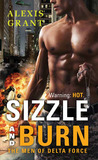 Sizzle and Burn (The Men of Delta Force, #1)