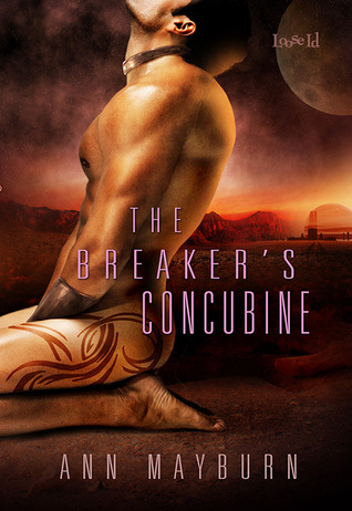 The Breaker's Concubine