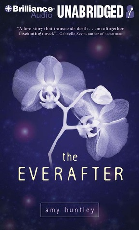The Everafter by Amy Huntley