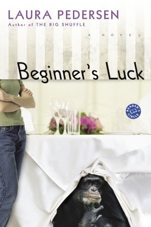 Beginner's Luck (Hallie Palmer, #1)