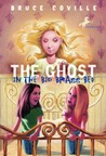 The Ghost in the Big Brass Bed (Nina Tanleven, #3)