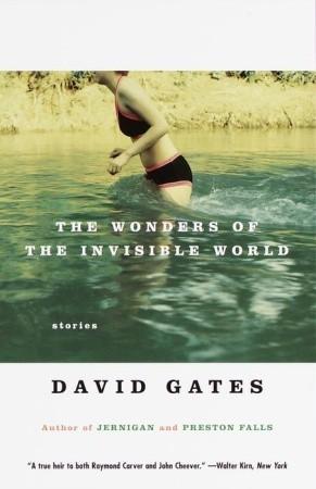 The Wonders of the Invisible World by David Gates