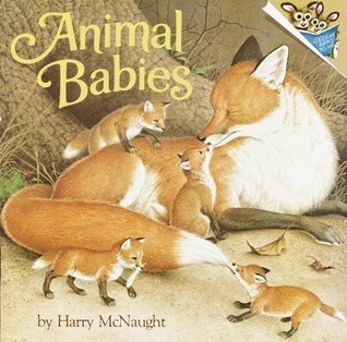 Animal Babies By Harry Mcnaught Reviews Discussion