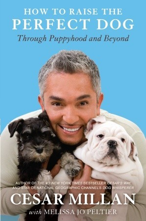 How to Raise the Perfect Dog by Cesar Millan