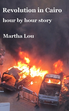 Revolution in Cairo (hour by hour story)